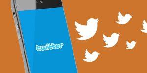 Twitter volgers van profielen vergelijken